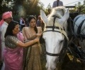 Ambika & Rahul gallery 18