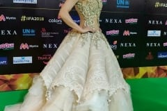 Best Dressed at the IIFA Awards 2018
