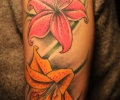 Colourful upper arm tattoo