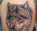 Upper arm wolf tattoo
