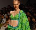 Leaf Green Saree