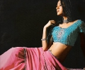 Cyan and Pink Embroided Saree