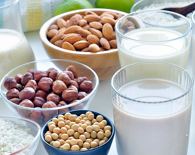 Vegan Dairy Free Milks