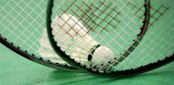Indian Badminton League 2013