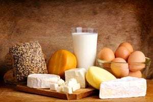 High Protein Dairy Products