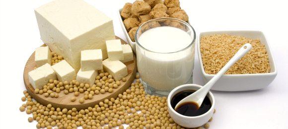 High Protein Soya