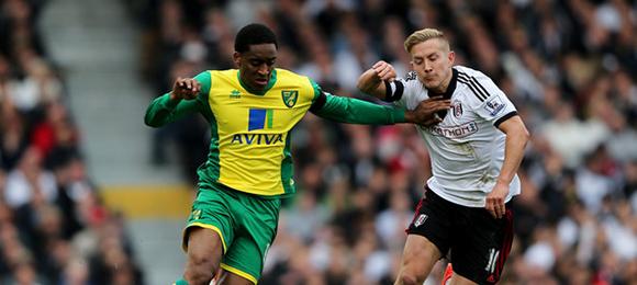 Premier League - Fulham V Norwich