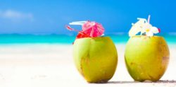 The Wonderful Benefits of Coconut Water