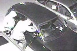 Ravinder and Ajay Soni car theft in July 2013