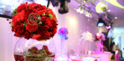 Nominations for the Asian Wedding Awards 2014
