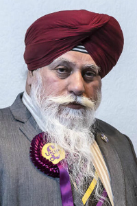 Harjinder Sehmi What do British Asians think about UKIP?