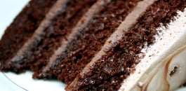 Ultimate Chocolate Cakes