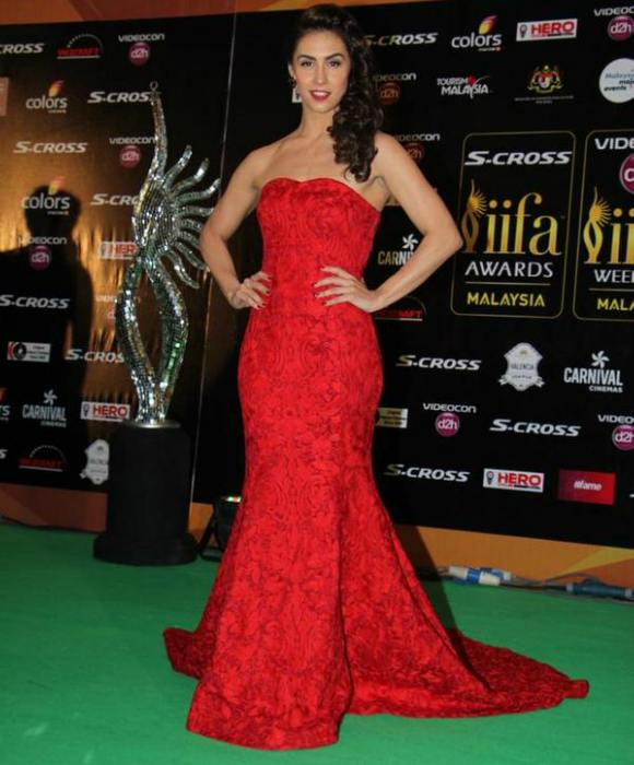 Lauren Gottlieb rocked a red strapless Mayyur Girotra gown.