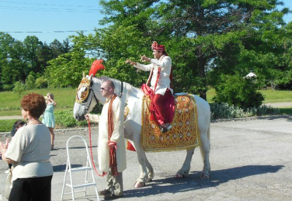 A Sikh groom's moment of joy and pride was abruptly interrupted when he was thrown off the back of a horse.