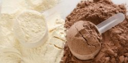 Best Protein Shakes to Boost your Workout