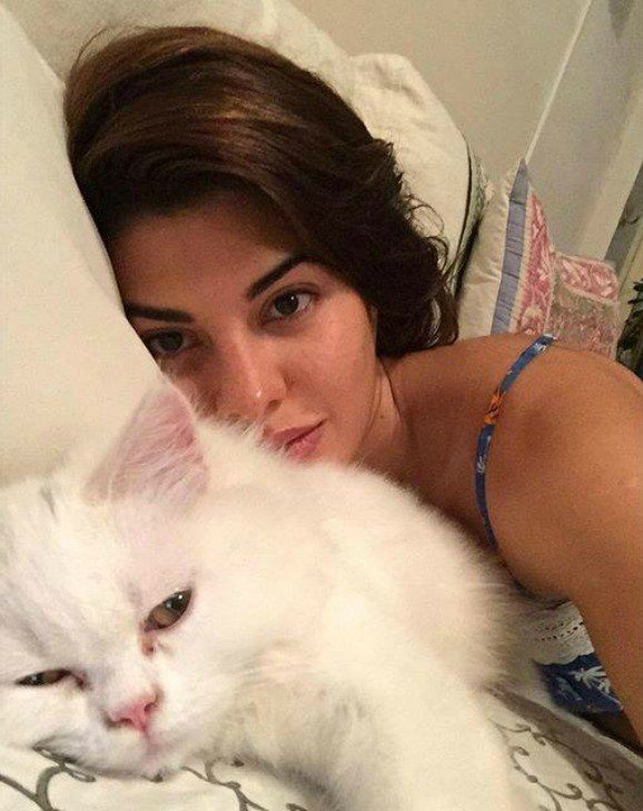 Best_Bollywood_Celebrity_Selfies_Cat