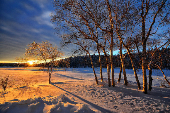 सर्दियों के बारे में 5 कविताएँ