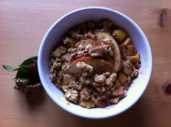 Homemade-Porridge-Recipes-Apple-Cinnamon
