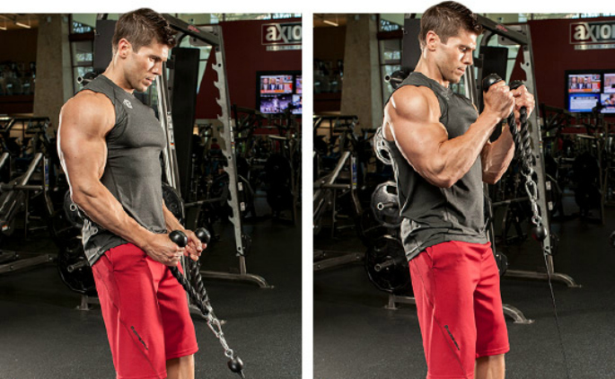 Top 5 Exercises for Biceps additoinal image 2 - Hammers Rope
