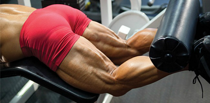 how to have an effective leg workout - feature image