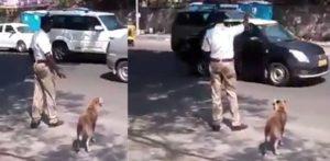 डॉग को रोड पार करने में मदद करने के लिए भारतीय पुलिसकर्मी ट्रैफिक को रोकता है