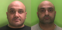 Brothers Jailed for Role in Cannabis Factory worth up to £3.5M