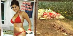 Indian Farmer puts up Sunny Leone Poster to Save Crops