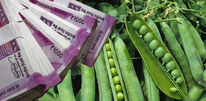 Indian Government Employee caught Accepting Peas as Bribe
