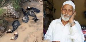 மஹ்தாப் உசேன்: 'நான் வீட்டிற்கு வந்த வீட்டிற்குச் செல்வது'
