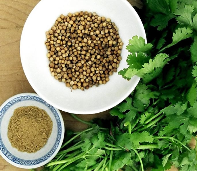 essential indian spices coriander
