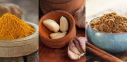 10 Essential Indian Spices Needed for Cooking