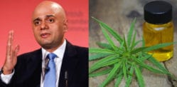 Sajid Javid: Medical Cannabis available from November 2018 on NHS
