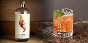 Seedlip Grove 42 refining the Art of Non-Alcoholic Drinks f