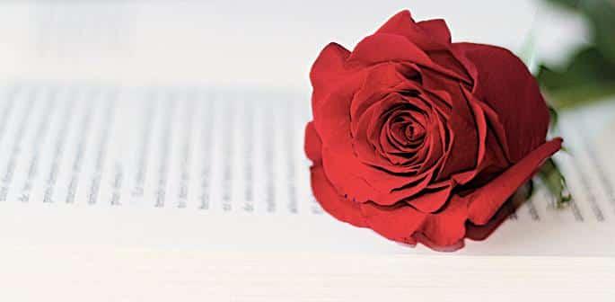 10 Most Romantic Pakistani Books You Must Read f2