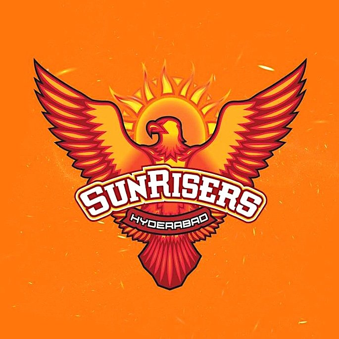 The 8 Cricket Teams and Squads of IPL 2019 - Sunrisers Hyderabad