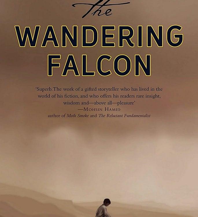 15 Top Pakistani English Novels you must Read - falcon
