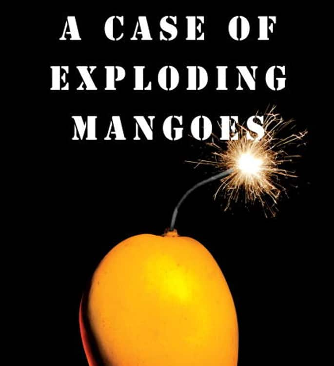 15 Top Pakistani English Novels you must Read - mangoes