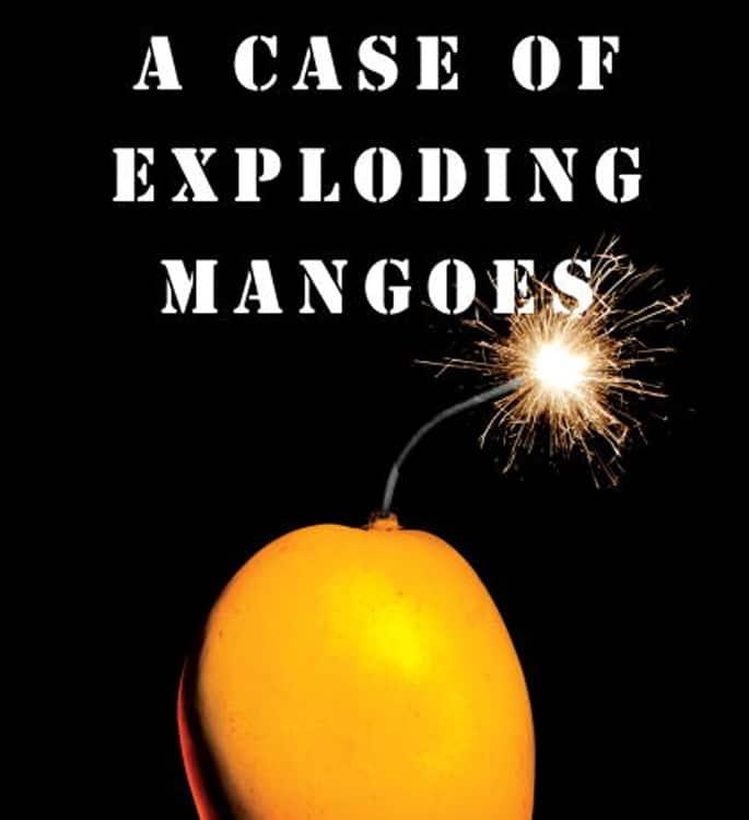15 Top Pakistani English Novels you must Read - mangoes