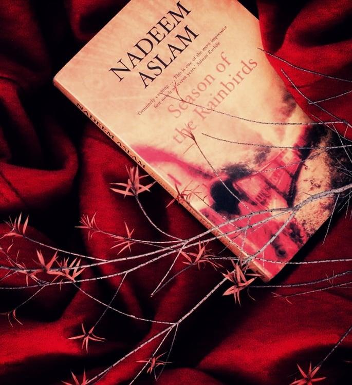 15 Top Pakistani English Novels you must Read - rainbirds