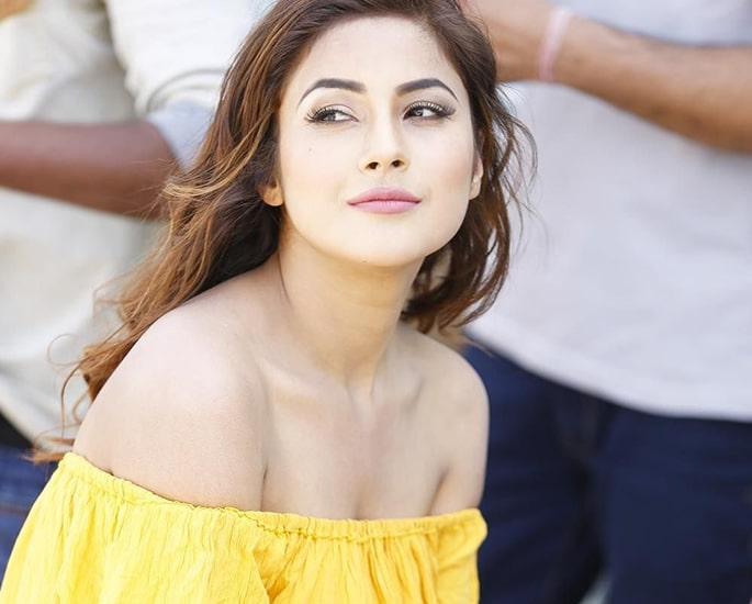 Meet the Contestants of the Bigg Boss 13 House - gill