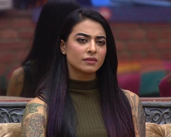 What have the Bigg Boss Contestants Earned Over the Years? - Bani J
