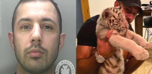 Fugitive Fraudster Zahid Khan taunts Cops with Pet Tiger f
