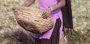 भारतीय पत्नी आणि तिचे दोन प्रियकर तिच्या नवband्याला मारतात f