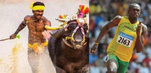 Indian Buffalo Racer runs Faster than Usain Bolt f
