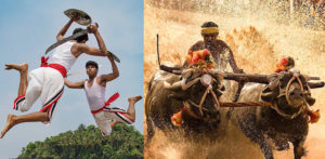Ten Unusual and Weird Sports Played in India f