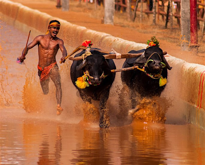 Ten Unusual and Weird Sports Played in India - kamabala