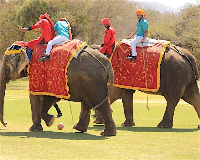 Ten Unusual and Weird Sports Played in India - polo