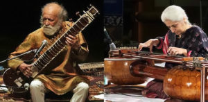 Types of the Veena Instrument - F