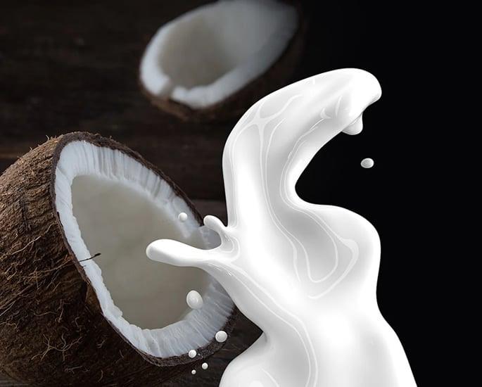 Nutritious Food that Every New Vegan Needs - coconut milk