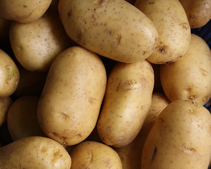 Nutritious Food that Every New Vegan Needs - potatoes